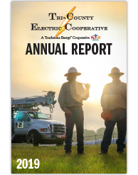 Click the cover image of the Annual Report newsletter to access full copy